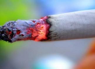 منظمة الصحة تدعو المغرب إلى رفع أسعار التبغ لمحاربة التدخين