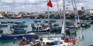 ارتفاع قيمة مصايد الصيد الساحلي والتقليدي بنسبة 3 بالمائة في نهاية أكتوبر