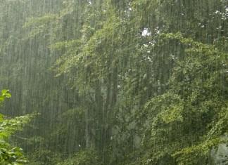 أمطار عاصفية تهم عددا من جهات المملكة