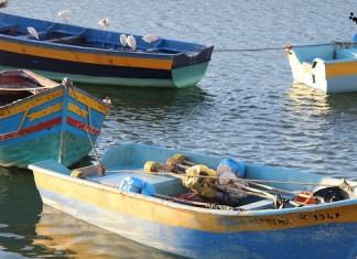 غرق حوالي 60 قاربا للصيد التقليدي بسبب العاصفة البحرية بميناء آسفي