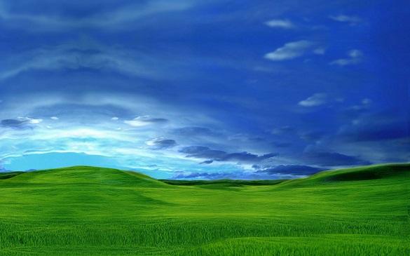 مايكروسوفت تنهي خدمة Windows XP وOffice 2003 رسمياً