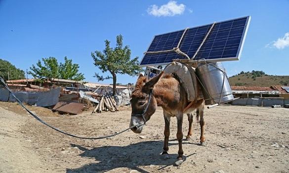 رعاة تركيا يولدون الكهرباء على ظهور الحمير باستخدام أجهزة متنقلة