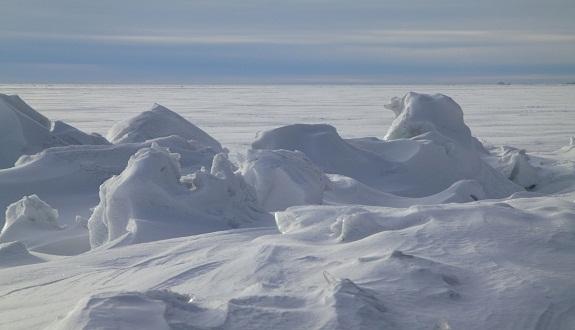 لأول مرة في التاريخ.. الأذان يرفع في القارة القطبية الجنوبية