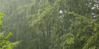 التساقطات المطرية الأخيرة تنعش آمال الفلاحين في تحقيق موسم فلاحي جيد