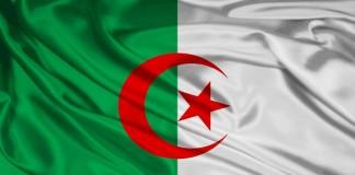 الجيش الجزائري يعثر على كمية ضخمة من الأسلحة والصواريخ