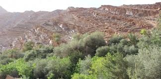 المغرب يعمل على تثمين منتوجات الاستغلاليات الفلاحية العائلية ضمانا لاستدامتها