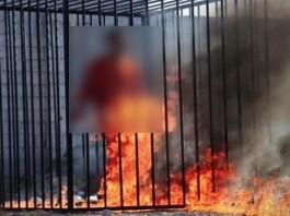 تعليق الشيخ البشير عصام المراكشي على حادث إحراق الطيار الأردني