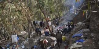 إخلاء غابة غوروغورو قرب مدينة الناظور من طالبي الهجرة السرية..