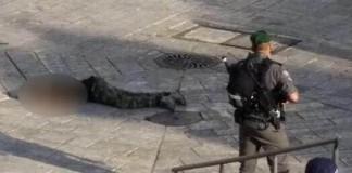 بدم بارد.. صهاينة يردون طفلا فلسطينيا بـ15 رصاصة