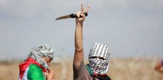 هذا ما فعلته انتفاضة القدس باليهود في الكيان الصهيوني