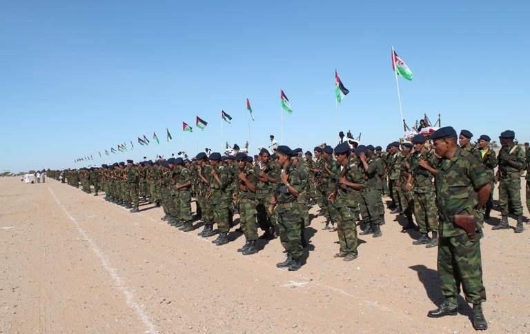 خبير دولي يؤكد عدم شرعية تمثيل (البوليساريو) للصحراويين