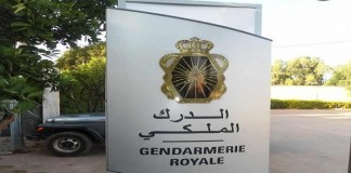 اعتقال منعش عقاري باع 1700 هكتار سلالية