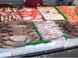 تقرير أسود عن المضاربات في أسعار السمك