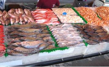 المغرب أول مصدر للأسماك في إفريقيا و17 عالميا