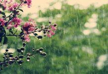 توقعات طقس الخميس 26 أبريل.. زخات مطرية رعدية