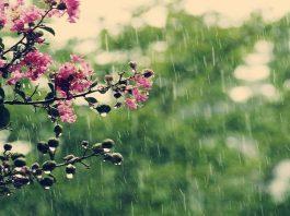 توقعات أحوال الطقس ليوم الثلاثاء 22 ماي 2018