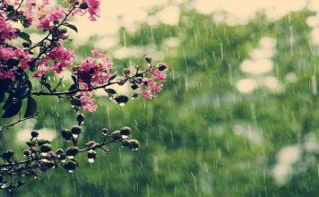 موعد مع المطر