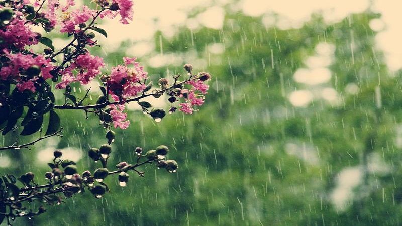 توقعات طقس اليوم السبت 26 ماي.. أمطار خفيفة ببعض المناطق