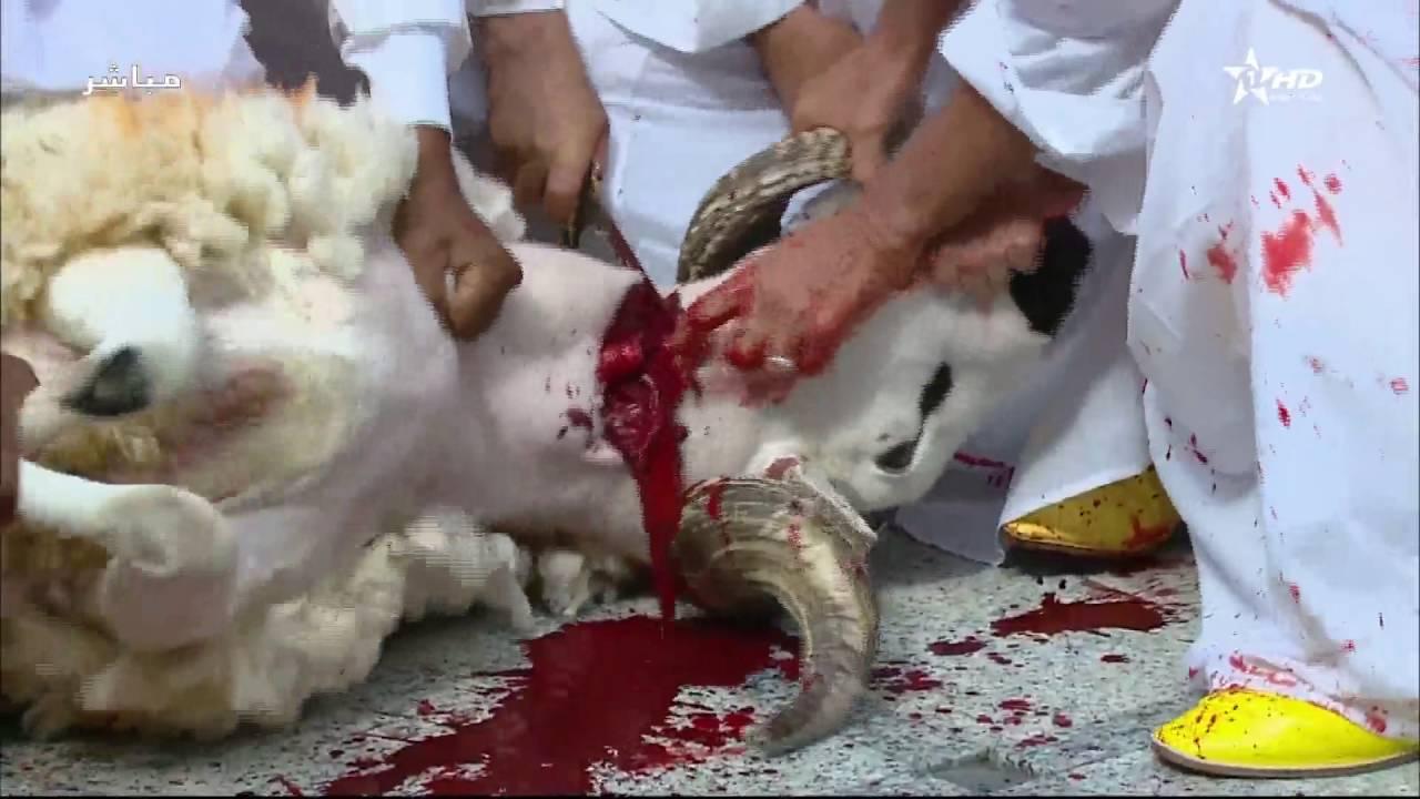 وزارة الأوقاف: الإثنين 12 غشت الجاري أول أيام عيد الأضحى 1440هـ في المغرب
