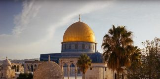 تسريبات تكشف قبول السيسي قرار ترمب بشأن القدس