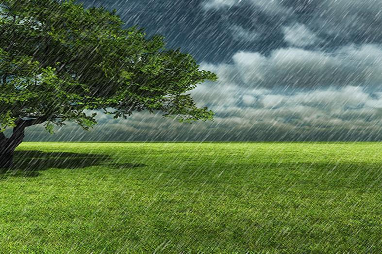توقعات أحوال طقس الأحد 26 يناير.. طقس بارد وأمطار ضعيفة