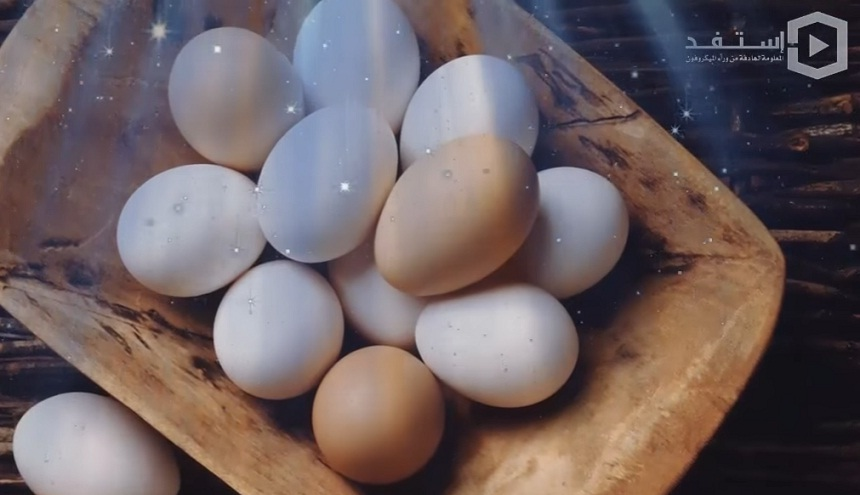 هل تعلم ماذا يحدث للجسم عند المداومة على تناول البيض يوميًا؟
