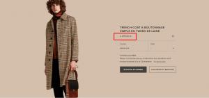ثمن معطف الملك