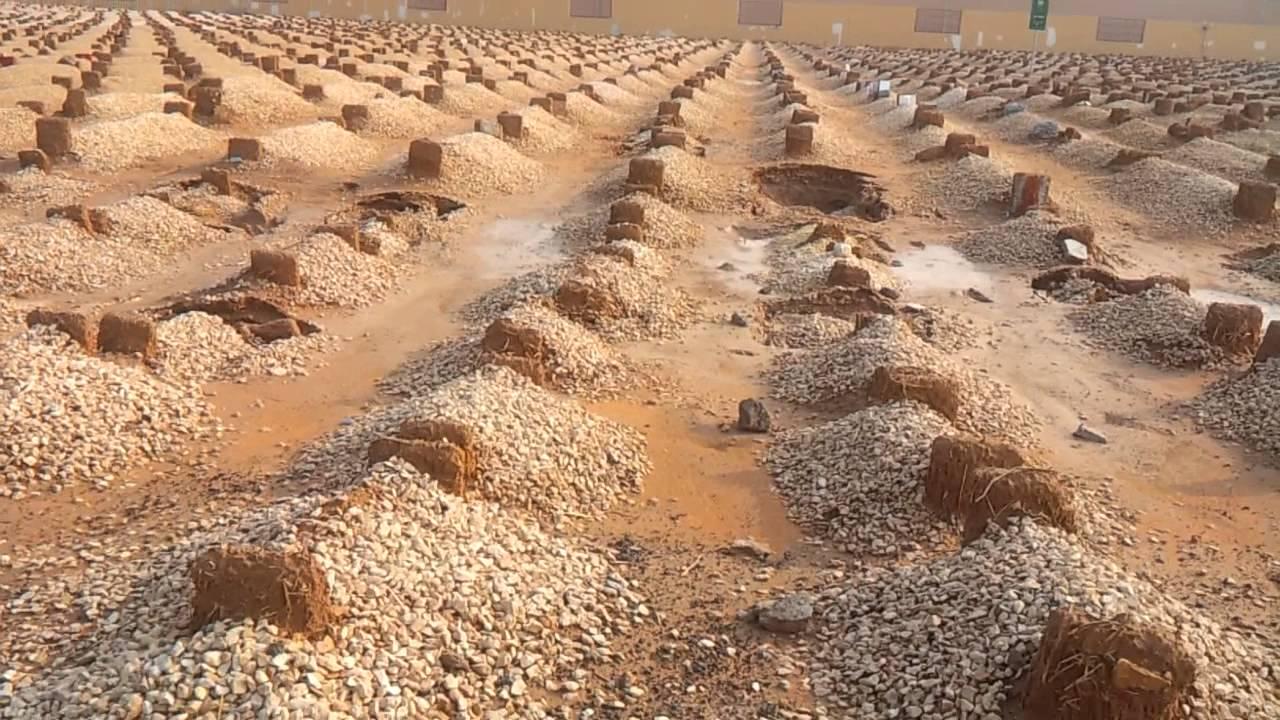 علماء أمريكيون يوصون بطريقة دفن تتوافق مع الشريعة الإسلامية