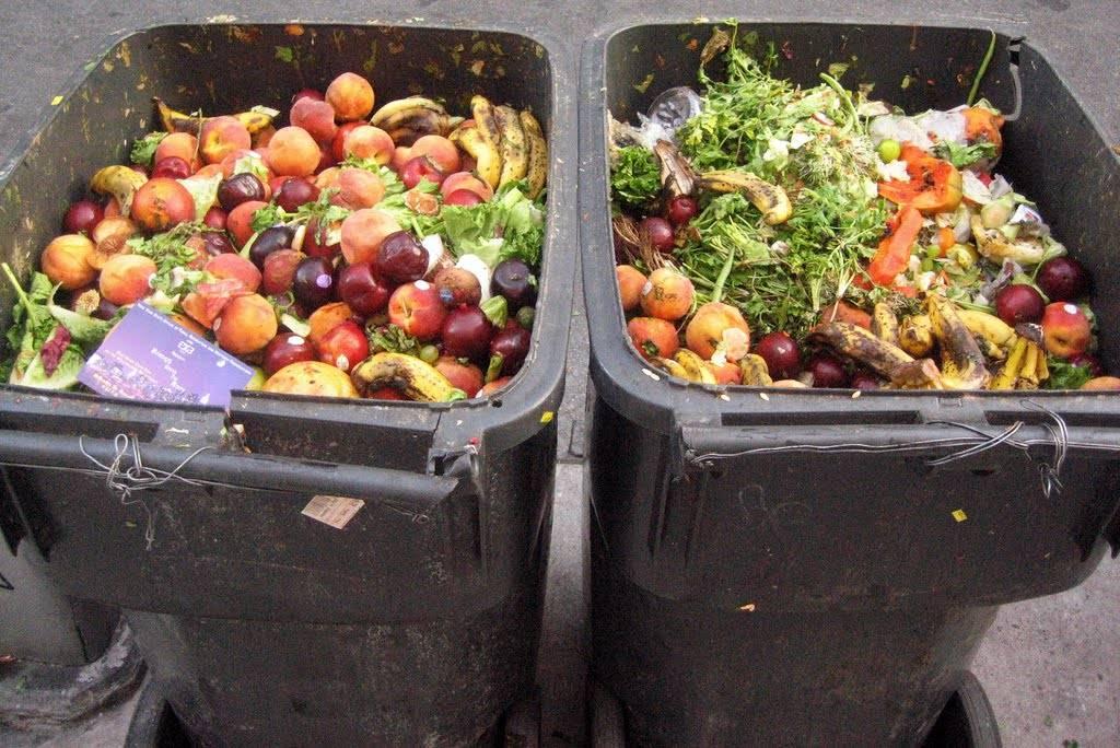 افتتاح أكبر مركز بالمغرب لفرز وإعادة تدوير النفايات المنزلية