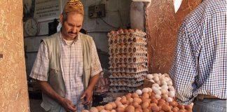 المغاربة يستهلكون 840 مليون بيضة في رمضان