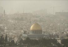 تحذيرات فلسطينية لترامب من تدمير حل الدولتين وتفجير المنطقة