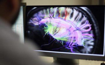 علماء أمريكيون يؤكدون نجاح تجربة أول رحم اصطناعي