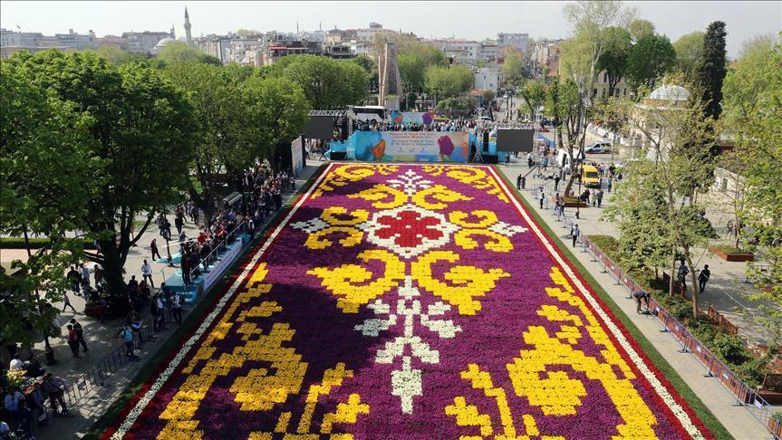 إسطنبول تتزين بأكبر سجادة من أزهار التوليب في العالم