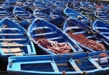 انخفاض حجم التفريغ للصيد الساحلي والتقليدي بنسبة 13% عند متم ماي 2018