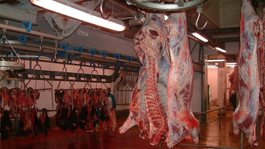 تسقيف سعر اللحم.. الداودي يستبعد أن يصل السعر إلى 100 درهم للكيلو الواحد