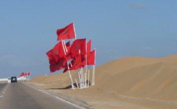 وزارة الخارجية الدنماركية : استيراد المنتجات من الصحراء قانوني ولا يتعارض مع الشرعية الدولية