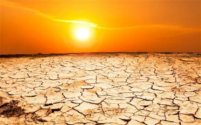 دراسة.. الجفاف يزيد من تركيز ثاني أوكسيد الكربون في الهواء