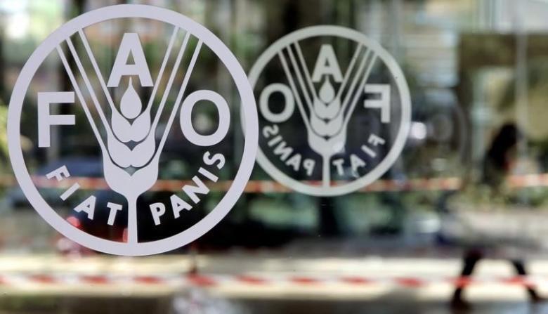 أكثر من نصف الأسر المغربية تبذر الطعام