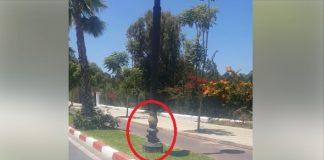 فيديو.. شاهد تخريب الملك العام بمدينة سلا (طريق مكناس)