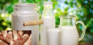 """مكتب السلامة الصحية يطمئن المغاربة وينفي استعمال """"جيلاتين الخنزير"""" في مشتقات الحليب"""