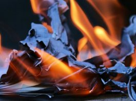 سنتان لساعي البريد الذي أحرق 18000 رسالة