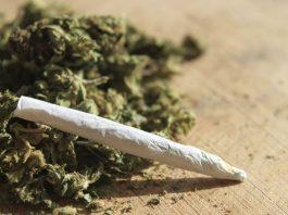 دراسة: تدخين الماريخوانا يزيد مخاطر الوفاة بسبب ضغط الدم المرتفع