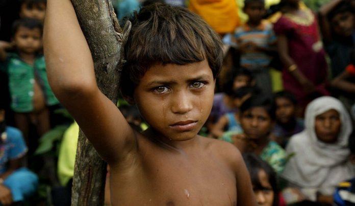 16 ألف طفل ولدوا بمخيمات الروهنغيا في