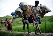 تقرير أممي: الحملة الممنهجة ضد الروهينغا تهدف لطردهم نهائيا