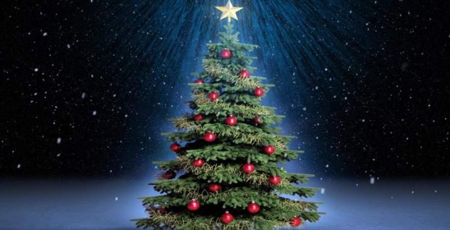 منظومة حكم الاحتفال بمولد المسيح عليه السلام