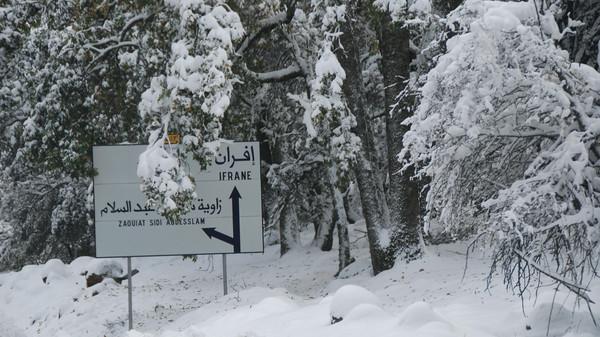 توقعات طقس الجمعة.. تساقطات مطرية وثلجية مهمة ببعض المناطق