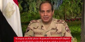 السيسي: ثورة 25 يناير لن تتكرر.. واستقرار مصر ثمنه حياتي