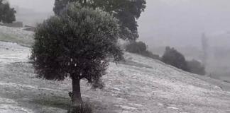 فيديو.. بداية التساقطات الثلجية بجماعة مغراوة القروية ودرجة الحرارة تحت الصفر