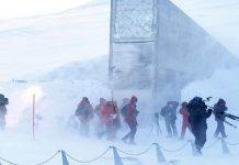 """النرويج تنفق 13 مليون دولار لتطوير قبو """"بذور يوم القيامة"""""""