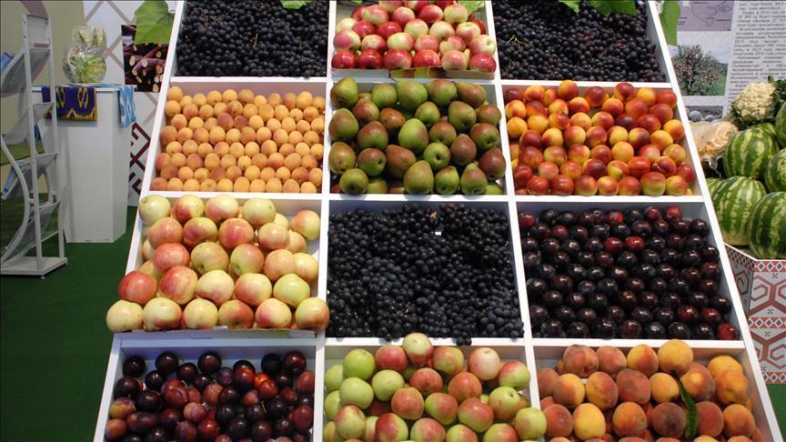 جمعية فرنسية: 72.6 بالمئة من الفاكهة في البلاد ملوثة بمبيدات حشرية